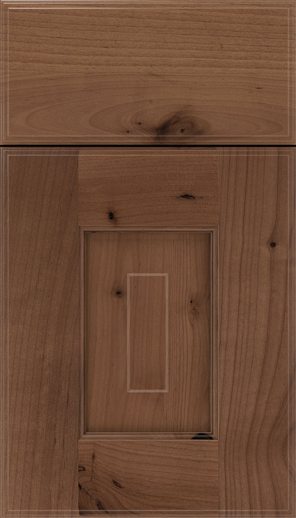 Brookfield Alder raised panel cabinet door in Nutmeg