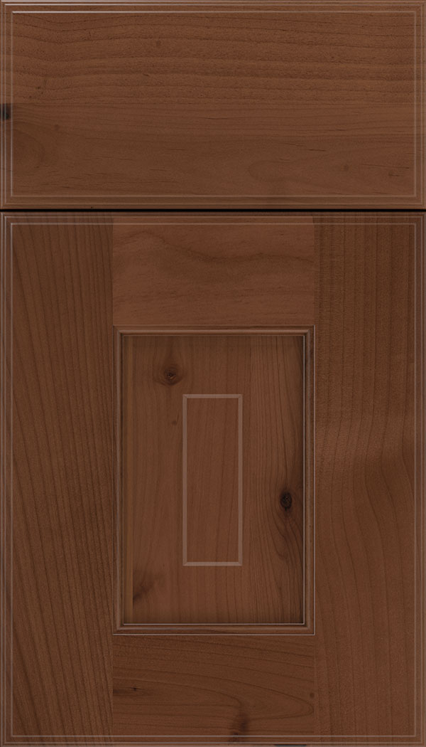 Brookfield Alder raised panel cabinet door in Russet