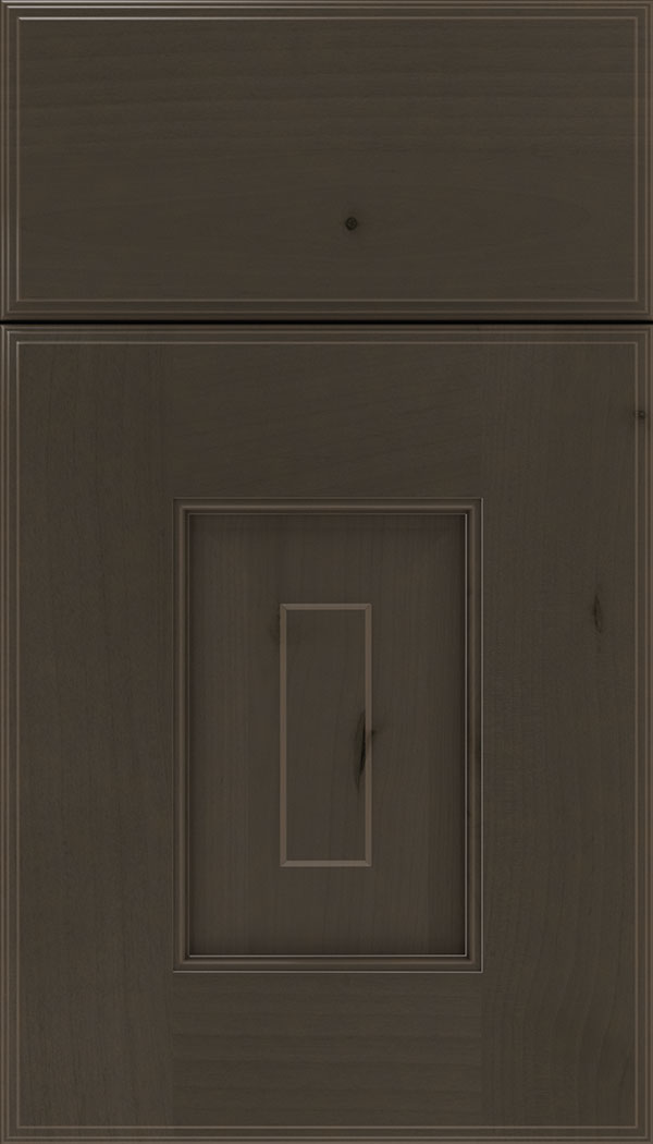 Brookfield Alder raised panel cabinet door in Thunder