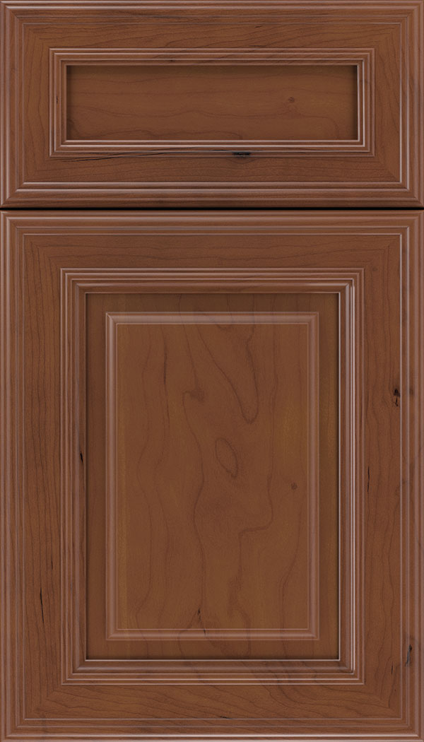 Chamberlain 5pc Cherry raised panel cabinet door in Russet