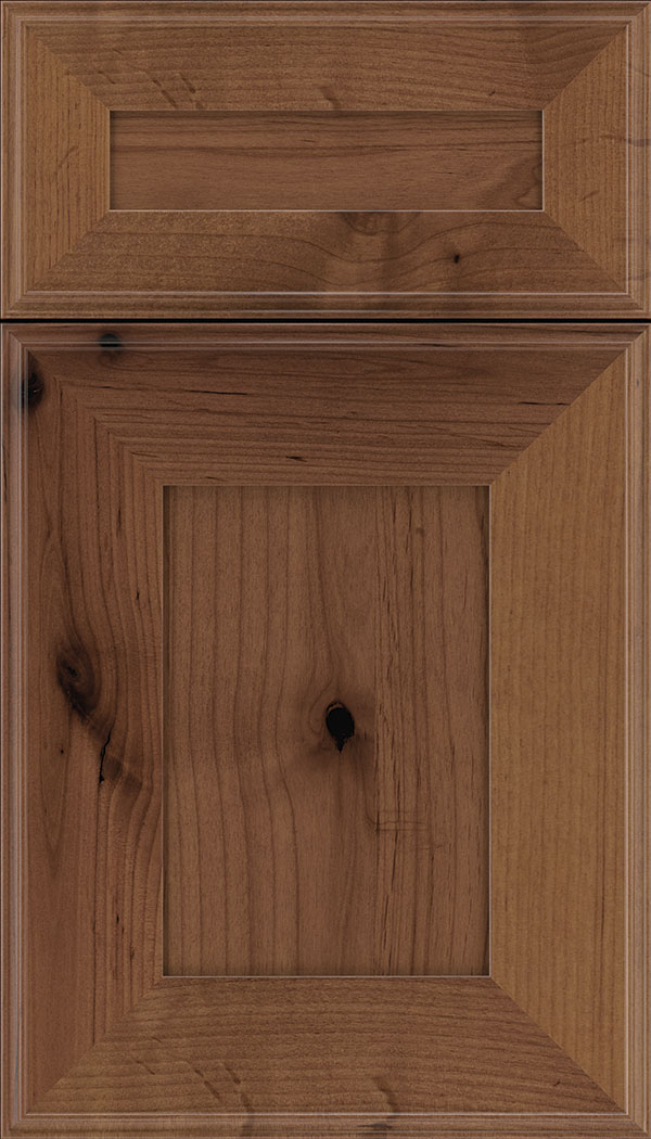 Elan 5pc Alder flat panel cabinet door in Nutmeg