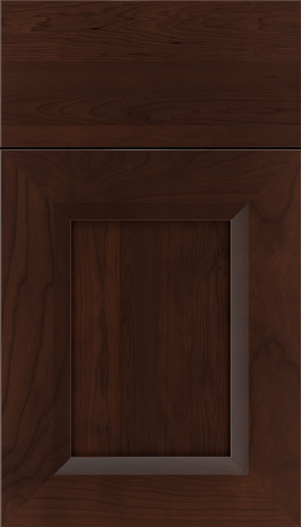 kenna_cherry_recessed_panel_cabinet_door_cappuccino
