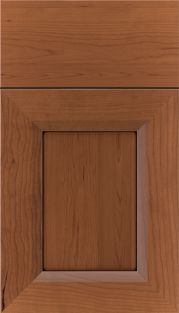 kenna_cherry_recessed_panel_cabinet_door_nutmeg_mocha