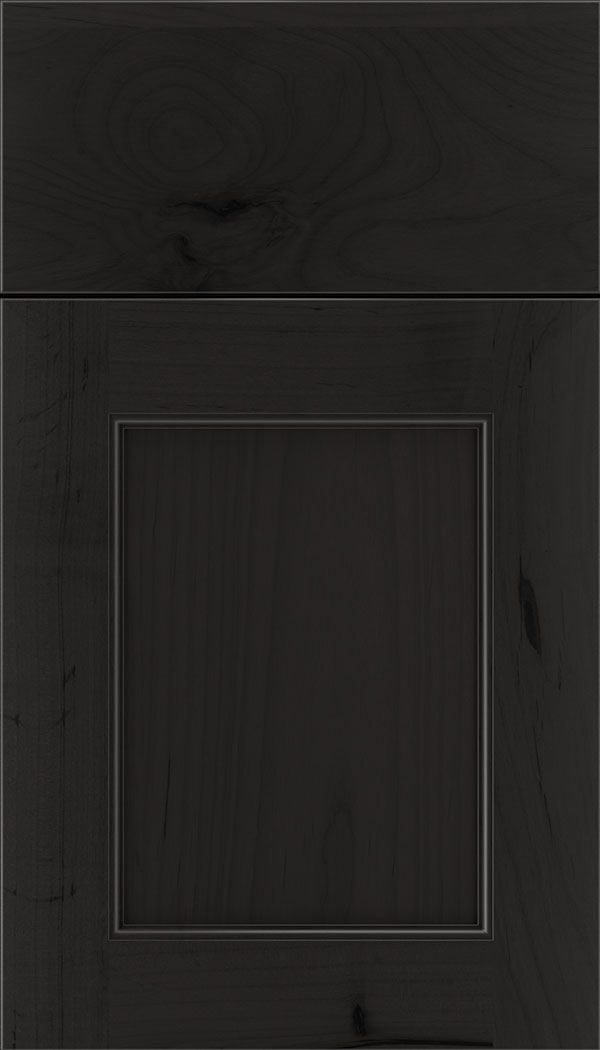 Lexington Alder recessed panel cabinet door in Charcoal