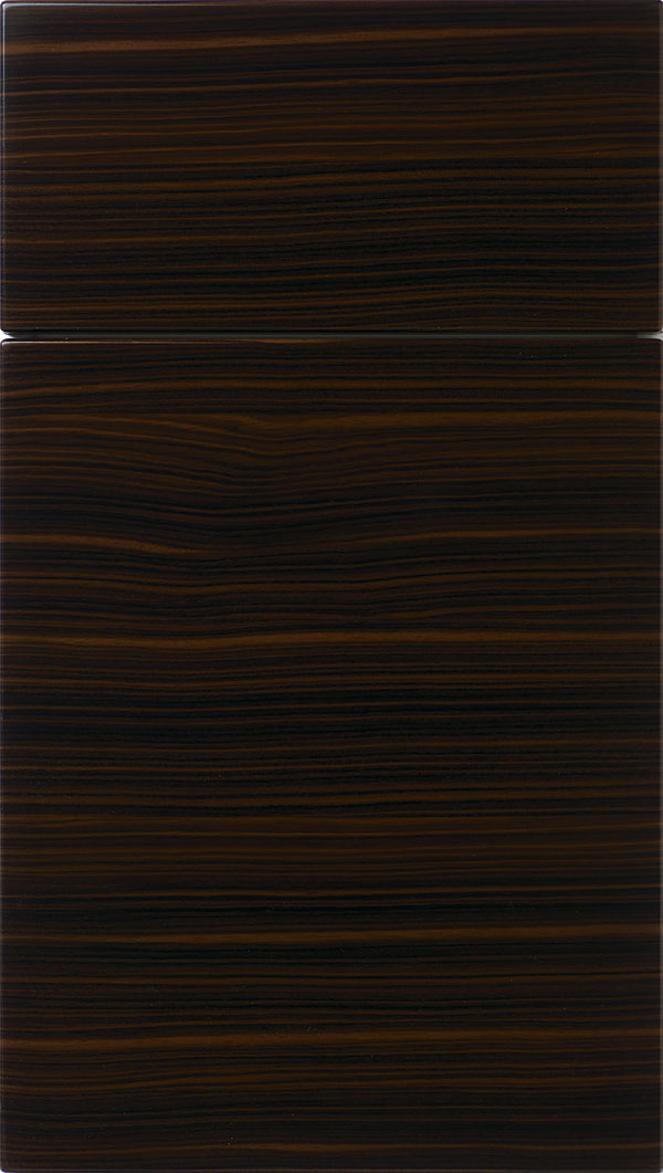 Pamli Thermofoil slab cabinet door in Palermo
