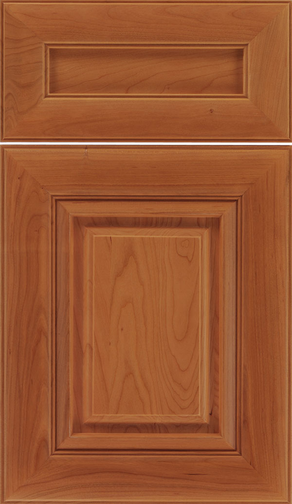 Paxson 5pc Cherry raised panel cabinet door in Ginger