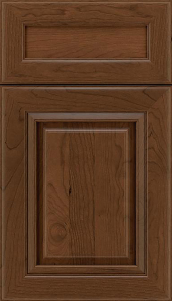 Paxson 5pc Cherry raised panel cabinet door in Sienna