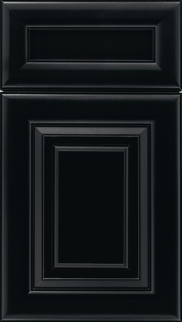 Paxson 5-Piece Maple raised panel cabinet door in Black