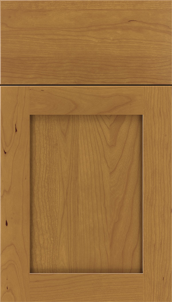 Plymouth Cherry shaker cabinet door in Ginger