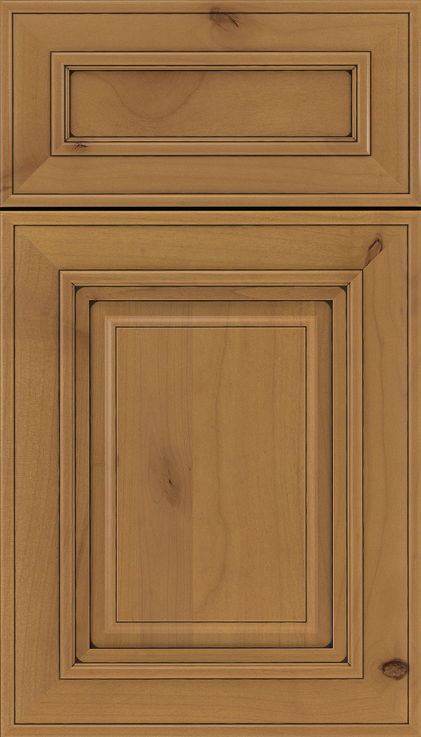 Regency 5pc Alder raised panel cabinet door in Ginger