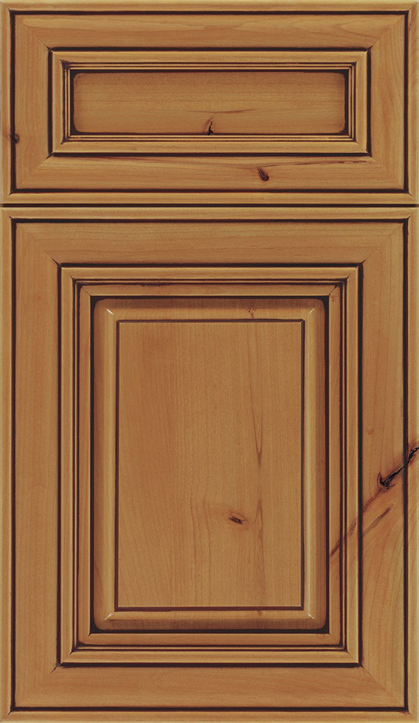 Regency 5-Piece Alder raised panel cabinet door in Ginger with Mocha glaze