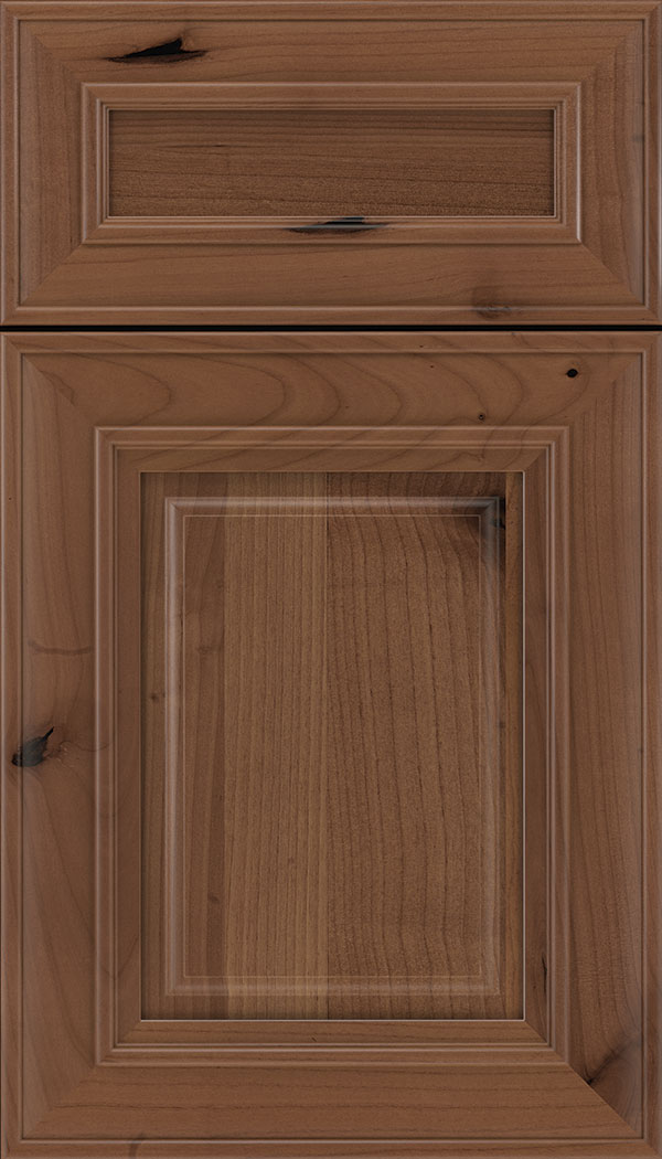 Regency 5pc Alder raised panel cabinet door in Nutmeg