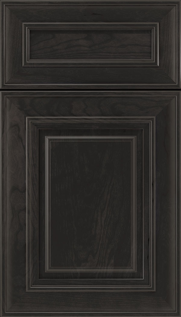Regency 5pc Cherry raised panel cabinet door in Charcoal