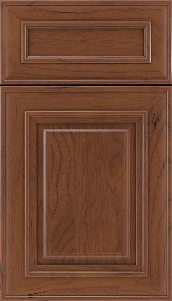 Regency 5pc Cherry raised panel cabinet door in Russet
