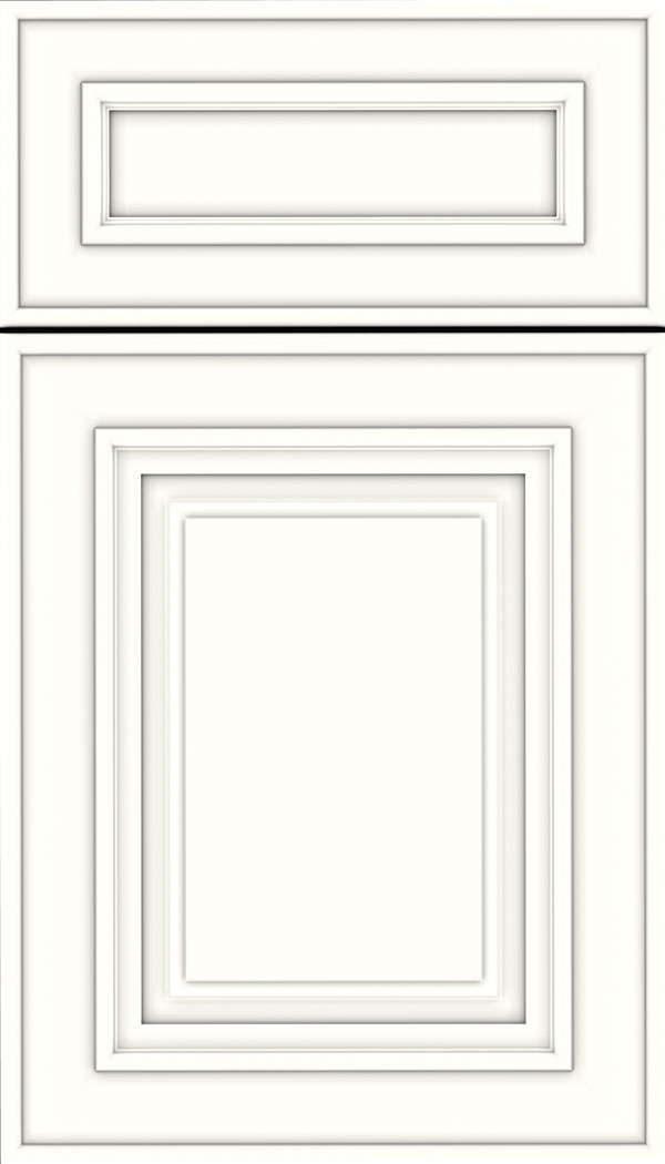 Regency 5pc Maple raised panel cabinet door in Alabaster