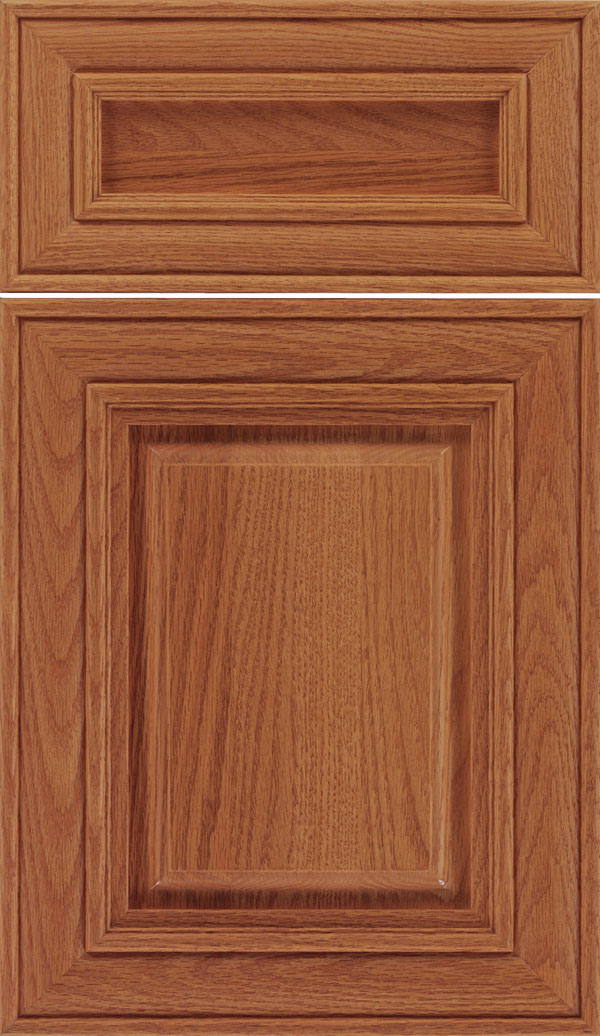 Regency 5pc Oak raised panel cabinet door in Spice