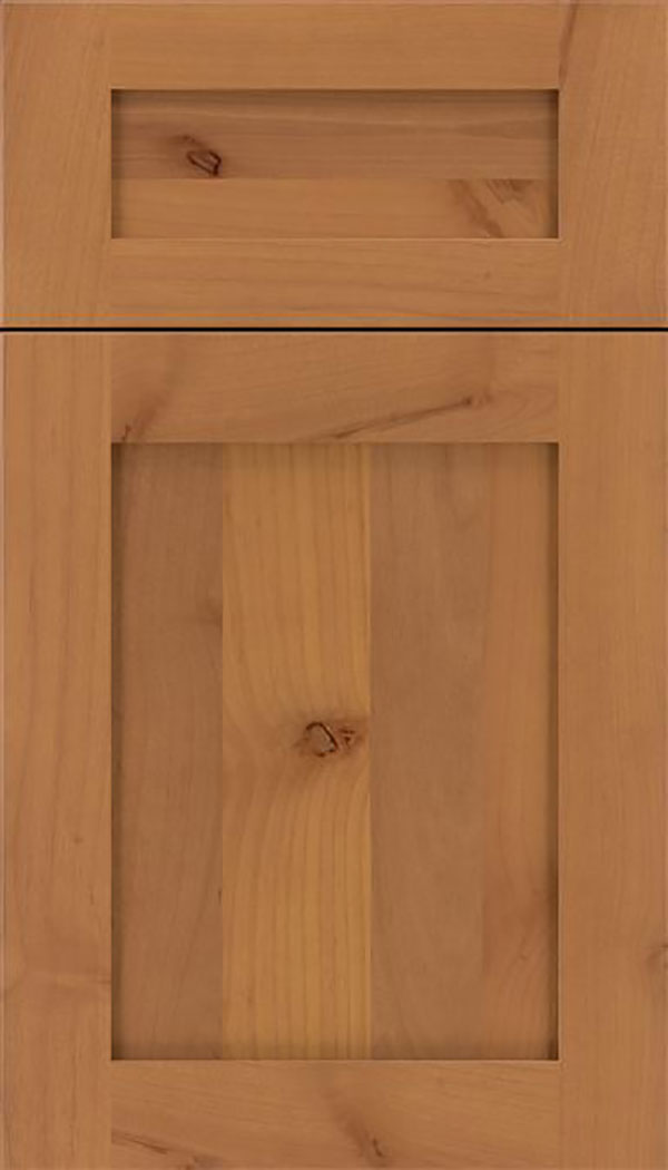 Salem 5pc Alder shaker cabinet door in Ginger
