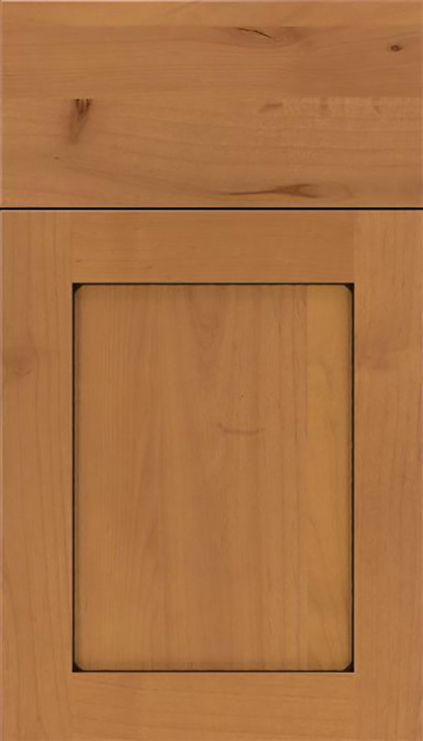 Salem Alder shaker cabinet door in Ginger with Black glaze