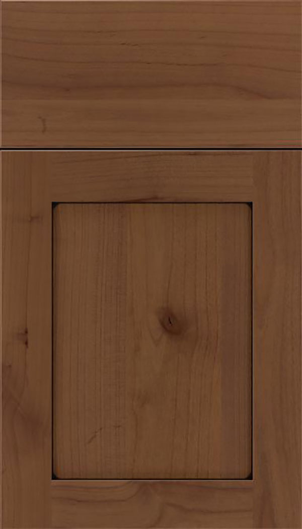 Salem Alder shaker cabinet door in Sienna with Black glaze