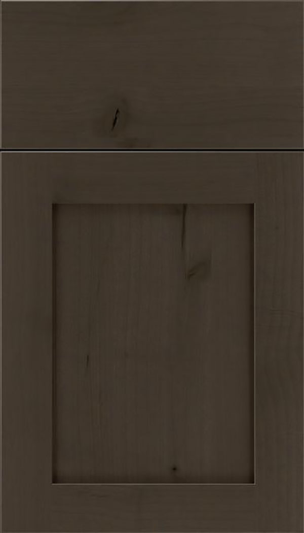 Salem Alder shaker cabinet door in Thunder