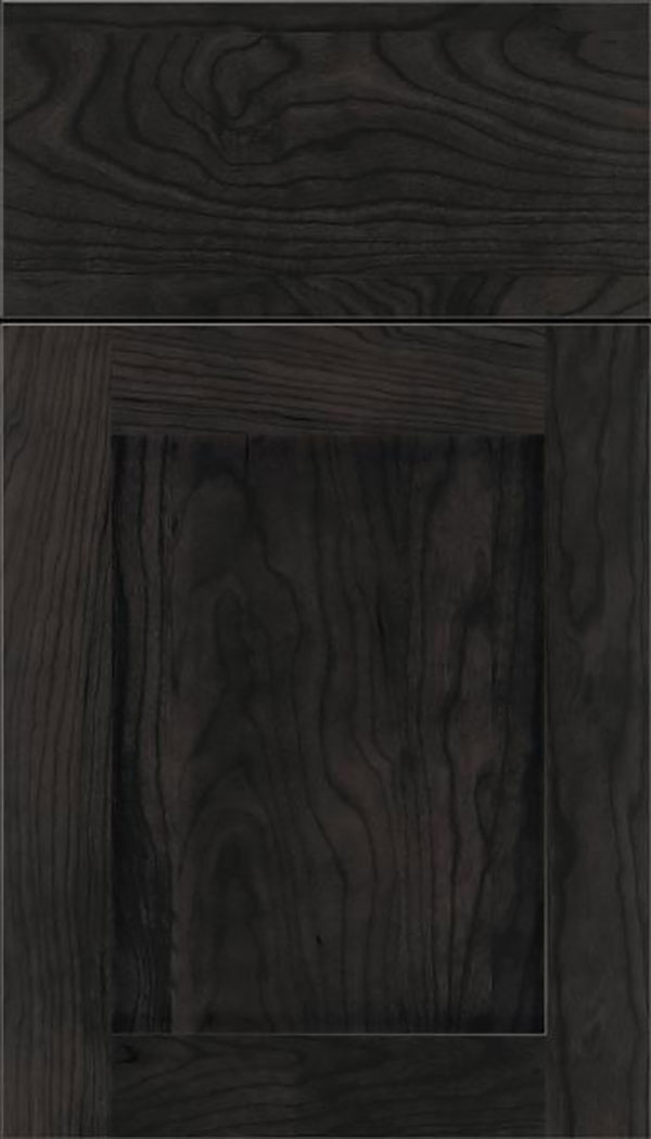 Salem Cherry shaker cabinet door in Charcoal