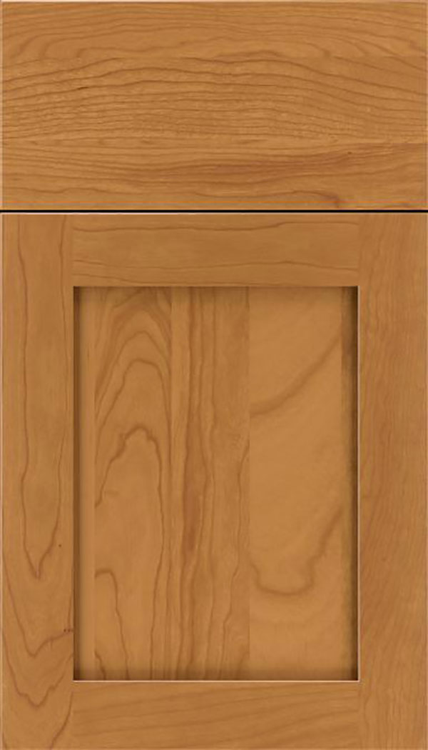 Salem Cherry shaker cabinet door in Ginger
