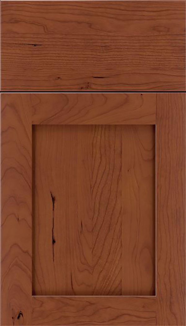 Salem Cherry shaker cabinet door in Russet