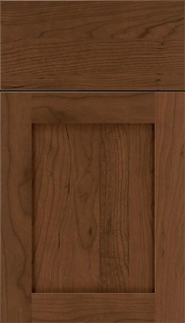 Salem Cherry shaker cabinet door in Sienna