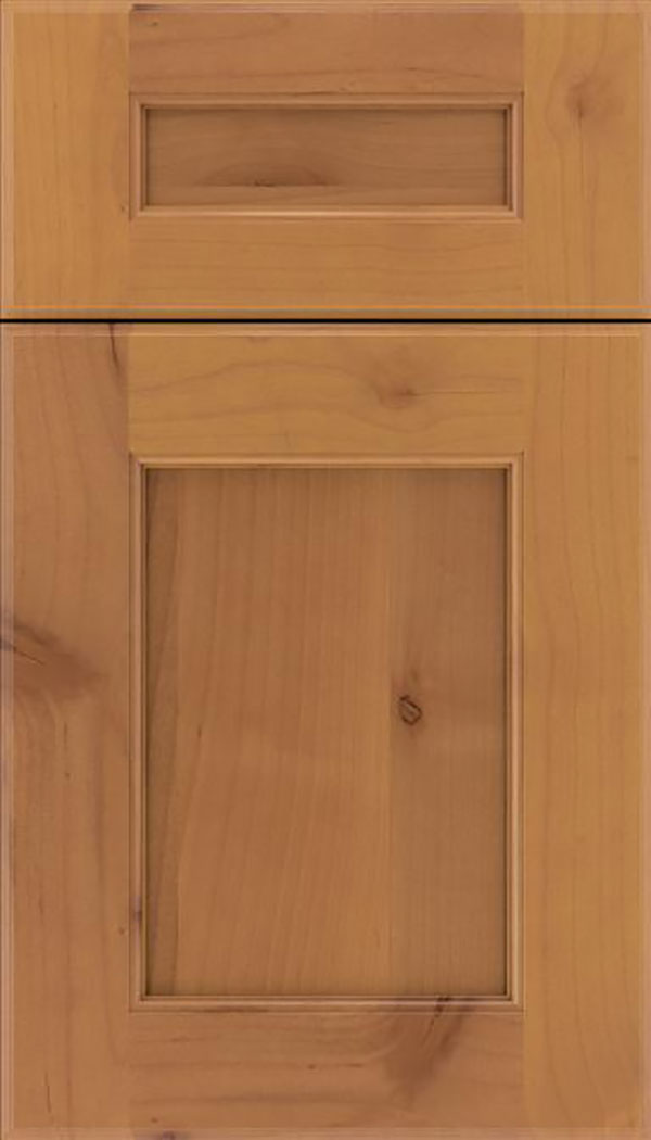 Tamarind 5pc Alder shaker cabinet door in Ginger