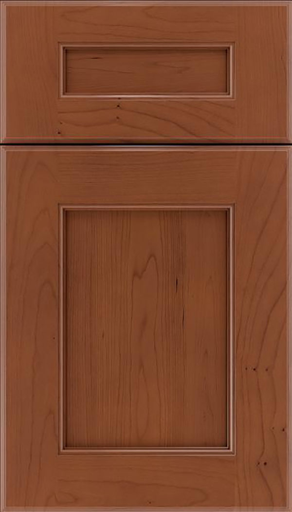 Tamarind 5pc Cherry shaker cabinet door in Russet