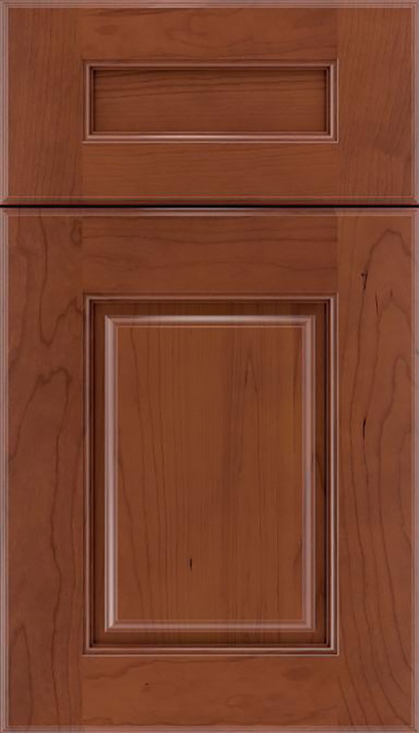 Whittington 5pc Cherry raised panel cabinet door in Russet