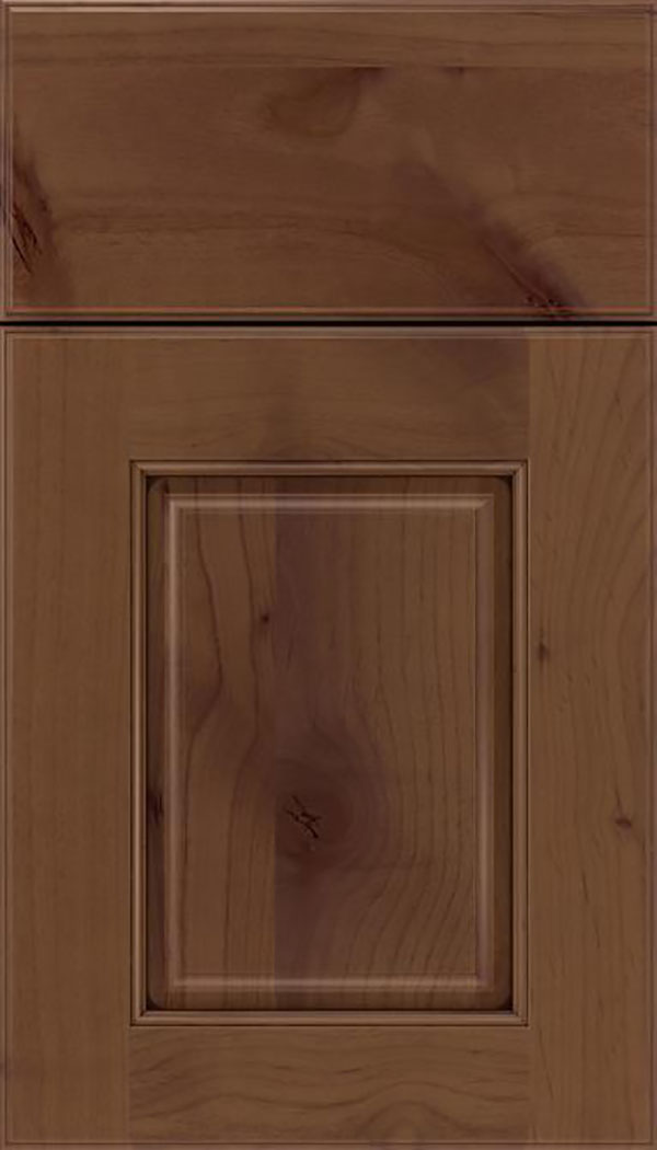 Whittington Alder raised panel cabinet door in Sienna with Mocha glaze