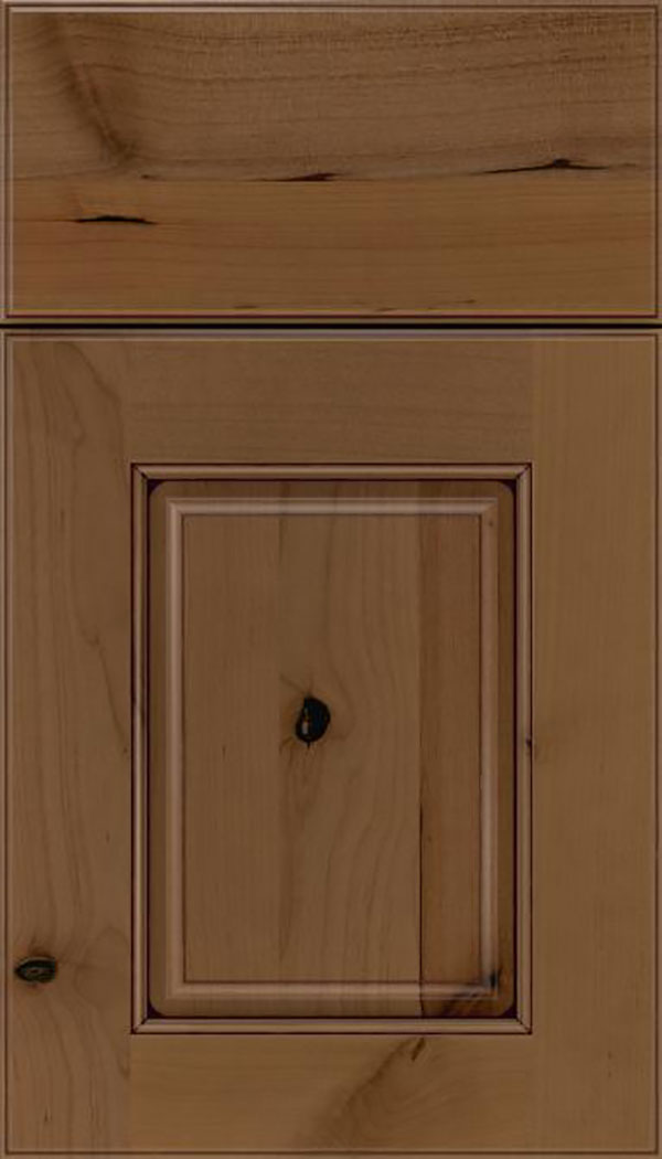 Whittington Alder raised panel cabinet door in Tuscan with Mocha glaze